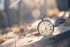 Time goes by: vintage watch outdoors; wood, leaves and sunshine. Vintage pocket watch on a wood board, colourful leaves, autumn time goes clock duration speed up stock photos