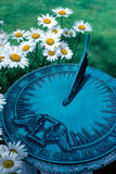 Time for growth. A sundial sits in a growing garden Stock Image
