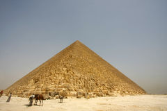 Time has stopped. The great Pyramid  with local camel guide Stock Photo