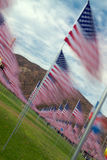 Time Lapse American flags in rows. Rows of American flags are shown as blurs in the wind Stock Images