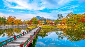 Time lapse autumn of Gyeongbokgung Palace in Seoul, Korea. stock video footage