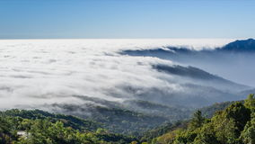 Time lapse beautiful mist flowing on valley. At doi inthanon national park of chiang mai, thailand (pan shot stock footage