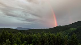 Rainbow over forest time lapse. Sky after rain. Full HD 1920 x 1080. Timelapse video of colorful rainbow moving over forest. Full HD 1920x1080 stock video footage