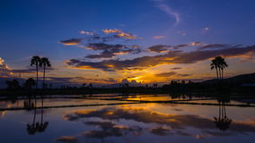 Time lapse beautiful sunset and reflection in pond stock video
