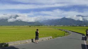 Time lapse of the beauty of the farmland in Taitung Taiwan stock footage