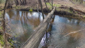 Time-lapse. Bridge over the spring creek. Windy. stock video