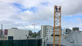 Time lapse of builders assemble a tower crane stock video