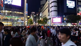 Time Lapse of Busy Shibuya Scramble Crossing at Night in Tokyo Japan stock video
