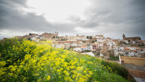 Time Lapse of Caceres, cloudy sky, yellow flowers in the foreground stock video footage