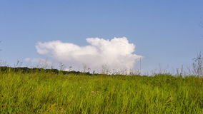 Time Lapse. The cloud floats down the hill. Time Lapse. A huge cloud floating on a green hillside. Summer stock footage