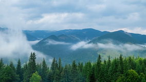 Time lapse clouds moving over pine tree highland forest. Foggy morning landscape stock video