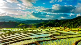 Time lapse, Clouds moving over the rice fields reflected in the water stock video footage