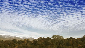 Time Lapse clouds over the autumn forest stock video footage