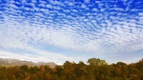 Time Lapse clouds over the autumn forest stock video