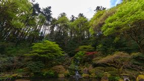 Time lapse of clouds over waterfall with lush green trees and plants in Portland Japanese Garden Spring season 4k stock video