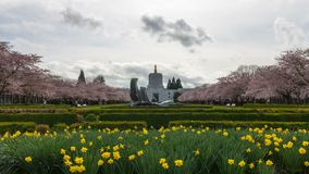 Time Lapse of clouds and people in Salem State Capitol in Oregon in Spring season stock video