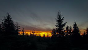 Time Lapse Clouds sweep over shoreline tall pines stock footage