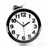 Time lapse concept - snail and clock isolated on white. Time lapse concept - snail and clock on white background stock image