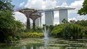 Time lapse del día de los jardines de Singapur Cacerola para arriba almacen de metraje de vídeo