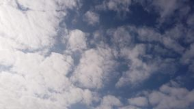 Time lapse of dense and compact white cirrocumuli clouds in a blue summer. Sky with plays of light and shadows stock video