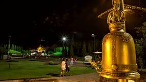 Time Lapse Firework Royal Flora tilt up stock footage
