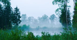 Time lapse of fog rising from a forest pond. With lake in background stock footage
