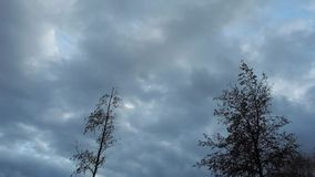 Time-lapse footage of dark clouds moving across the sky. And bare trees - on a cold winter day stock video footage