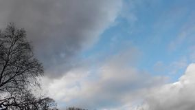 Time-lapse footage of dark clouds moving across the sky - and bare trees. On a cold winter day stock video footage