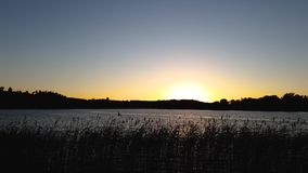 Time lapse. Gorgeous sunset on forest lake view. Beautiful summer backgrounds. stock video footage