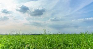 Time lapse green field with blue cloudy sky. stock video footage
