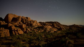 Time Lapse of Joshua Tree Desert Landscape at Night stock video footage