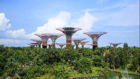 time lapse 4k de jardines por la bahía en Singapur metrajes