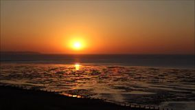 Time lapse low tide sunset stock video