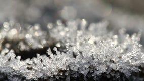 Time lapse macro de las partículas de fusión de la escarcha Belleza majestuosa de la transformación de la primavera en naturaleza metrajes