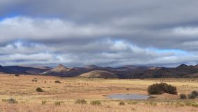 Time lapse - Mountain Zebra National Park stock video footage