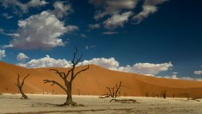 Time lapse - Moving clouds over the famous Dead Vlei. Namibia, Africa stock video