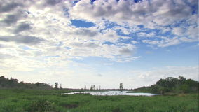 Time lapse of nature preserve stock video footage
