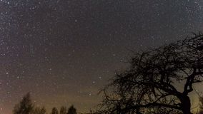 Time lapse at night with pole star stock footage
