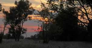 Free Time Lapse Of Sunset Over A Field With Trees Stock Photography - 136950862