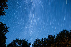 Time Lapse Photo of Blue Skies Full of Stars Above Silhouette of Trees Stock Image