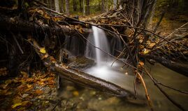 Time Lapse Photography of Falls Surrounded by Trees Stock Photos