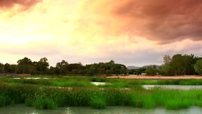 Time lapse the pond with grass  and yellow sky zoom out shot. Time lapse of pond with grass water and mountain with yellow sky zoom out shot to the dark stock footage