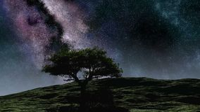 Time lapse purple night sky stars over the hill with tree. Time lapse purple night sky stars over the hill with  tree stock footage