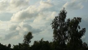 Time Lapse recording of white and grey clouds stock video footage