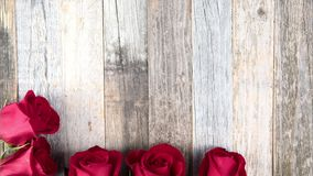 Time Lapse Roses Frame. Time lapse of red roses making frame on wooden table stock video footage