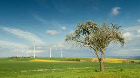 Time lapse - Rural landscape with apple tree and wind turbines. Wetterau, Hesse, Germany stock video
