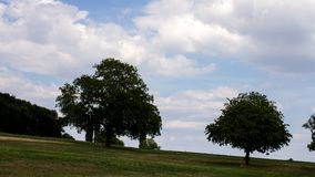 Time lapse of rural landscape with trees. Beautiful time lapse shot of a rural plot with fruit trees in mild summer weather stock video footage