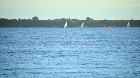 Time lapse of sailboats sailing on water of sea, lake or river,. Time lapse of many sailboats sailing on water of sea, lake or river stock video