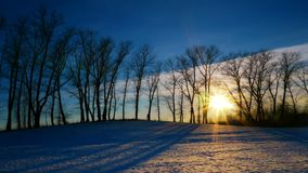 Sunset in the winter forest. Time lapse shoot of sunset in the winter forest stock video