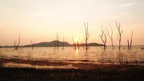 Time Lapse Silhouette of Dry tree in water at Bang Phra Reservoir in sunset, Sriracha District ,Chonburi, Thailand.  stock footage